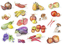 Watercolor fruits and vegetables set. Fruits, mushrooms  and vegetables isolated set-  handmade watercolor painting illustration on a white paper art background Stock Photo