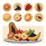 Fruits nutrition salad plate icons. Vector illustration eps 10 Stock Images