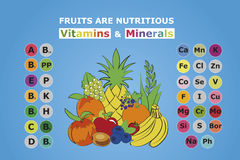 Fruits are nutritious. Usefulness of fruit. The content of vitamins and trace elements minerals in the most common fruit. Basics of healthy nutrition,dieting Royalty Free Stock Photo