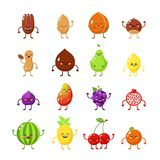Fruits and nuts hero. Happy food, vegetarian friend food big collection. Nut, pineapple, cherry. Lemon icon. Stock Images