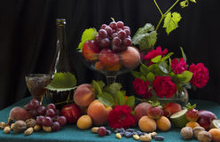 Fruits, nuts and wine stock photos