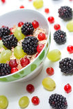 Fruits and oatmeal Royalty Free Stock Photos