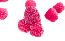 Free Fruits Of Raspberry Royalty Free Stock Photo - 48305775