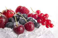 Fruits On Ice Stock Images