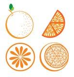 Fruits orange design Royalty Free Stock Image