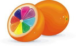 Fruits Orange inside Rainbow color  Stock Photos