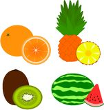Fruits - orange, pineapple, kiwi, watermelon Royalty Free Stock Photo