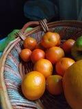 Fruits oranges images libres de droits