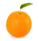 Fruits oranges avec les lames vertes Photographie stock