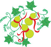 fruits oriental Стоковое Фото