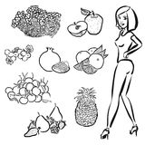 Fruits Outline Sketches with nice healty Girl Stock Photos