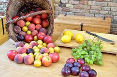 Fruits over the table Stock Photos