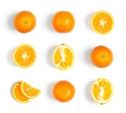 Collection of oranges on white background Royalty Free Stock Photos