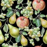 fruits pattern seamless Яблоко, виноградины и груша изображение иллюстрации летания клюва декоративное своя бумажная акварель лас Бесплатная Иллюстрация