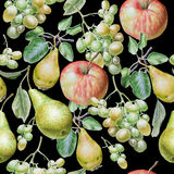 fruits pattern seamless 苹果计算机、葡萄和梨 额嘴装饰飞行例证图象其纸部分燕子水彩 库存图片