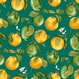 fruits pattern seamless E 免版税库存图片