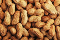 Fruits peanut with shell, closeup shot - background of peanuts Stock Images
