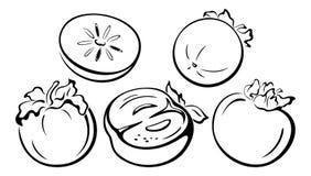 Fruits, Persimmon Black Pictograms Royalty Free Stock Photos