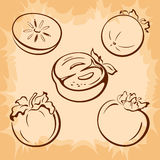 Fruits Persimmon Pictograms Stock Images