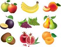 Fruits photo-realistic set Stock Photos