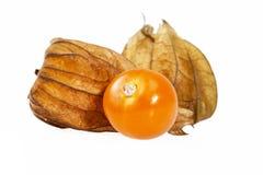 Fruits Physalis  isolated on white background, close up Royalty Free Stock Image