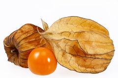 Fruits Physalis  Physalis peruviana isolated on white backgroud Royalty Free Stock Photos