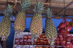 Pineapples in the market stock image