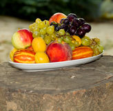 Fruits on a plate on a big old tree stump Stock Images