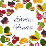 Fruits poster, tropical or exotic food Stock Photo