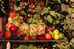 Fruits preserves - in the garden Stock Photos