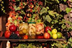 Fruits preserves - in the garden Stock Photos
