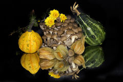 Fruits and pumpkins Royalty Free Stock Photography