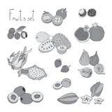Fruits réglés Images stock