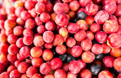 Fruits red cherry plum as a background Royalty Free Stock Photo
