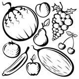 Fruits réglés Photo libre de droits