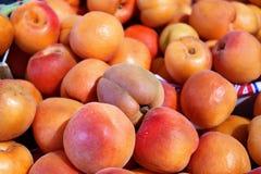 Fruits riches et juteux d'abricot photographie stock