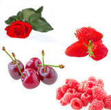 Fruits rouges Images libres de droits