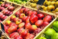 Fruits rouges et verts de pomme Photographie stock