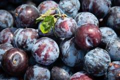 Fruits sains frais photographie stock libre de droits