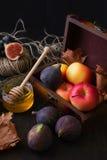 Fruits saisonniers d'automne Images stock