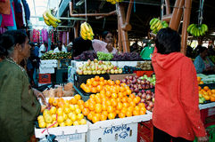 Fruits for sale on the local market Stock Photo