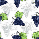 Fruits seamless pattern Royalty Free Stock Image