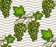 Fruits seamless pattern Stock Photo