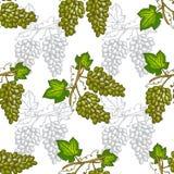Fruits seamless pattern Stock Photos
