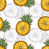 Fruits seamless pattern Stock Images
