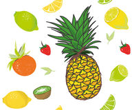 Fruits seamless vector pattern Royalty Free Stock Photography