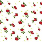 Fruits seamless pattern on white Royalty Free Stock Photography