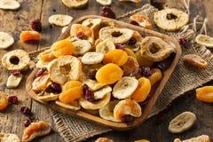 Fruits secs assortis sains organiques image libre de droits