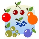 Fruits set Stock Photo
