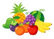 Fruits set  Stock Image